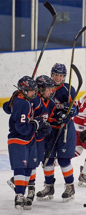 girlshockey-celeb