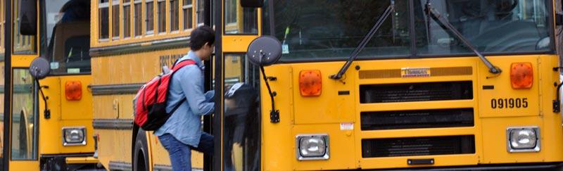 buses_DSC0003